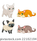 Group of cute cats with different colors 22102194
