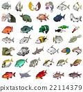 鱼 一套 咸水鱼 22114379