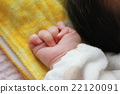 baby, infant, hand 22120091