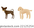 eleventh sign of the chinese zodiac, dogs, dog 22125254