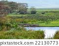 African landscape 22130773