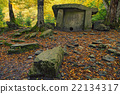 Dolmen in the forest 22134317