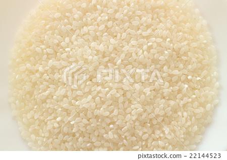 일본 쌀 텍스처 # 2 22144523
