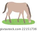 말 22151736