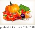 Fresh vegetables isolated on white background.  22160238