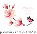 Beautiful pink magnolia branch with a butterfly.  22160239