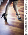 Ballroom dance latin dancer 22160801