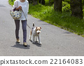 animal animals person 22164083