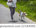 animal animals person 22164085