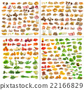 collection of Fruits and vegetable   22166829