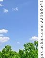 신록의 수림의 바다와 푸른 하늘 복사 공간 22168641