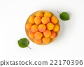 apricots, fruit, fresh 22170396