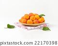 apricots, fruit, fresh 22170398
