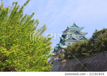 NAGOYA Castle Tamamori 22182826
