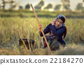 Woman worker in farmer suit on rice fields 22184270