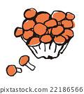 nameko, pholiota nameko, mushroom 22186566