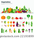 Banner Icons of Vegetables Healthy Food 22193899