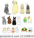 動物 各種各樣 姿勢 22198859
