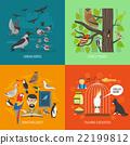 Bird 2x2 Images Concept 22199812