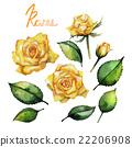 蓓蕾 发芽 玫瑰 22206908
