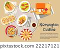 norwegian, vector, icon 22217121