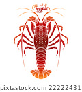 Graphic vector crayfish 22222431
