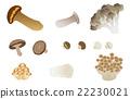 vectors, vector, japanese cuisine 22230021