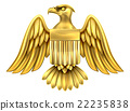 Golden American Eagle Shield 22235838