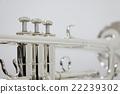 실버 트럼펫 Silver Trumpet 22239302