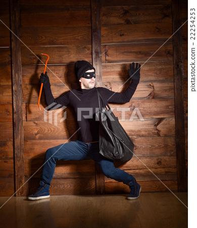 Masked thief 22254253