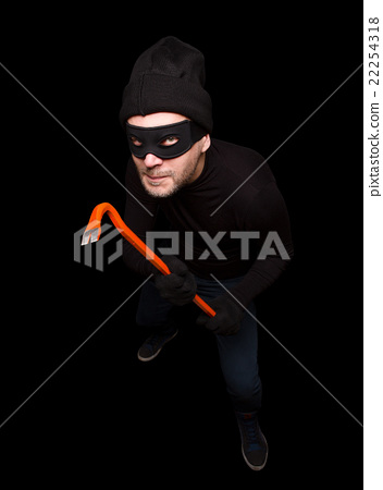 Masked thief 22254318