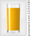 Orange Juice in a Glass 22254385