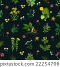 花朵 花 花卉 22254706