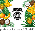 fruit banana pineapple 22265401