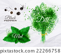 watercolor, herb, herbal 22266758