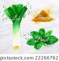 watercolor, herb, herbal 22266762