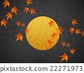 a, full, moon 22271973