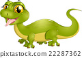 beautiful green lizard 22287362