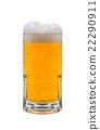 beer 22290911