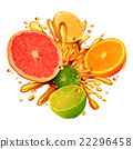 Citrus Fruit Splash 22296458
