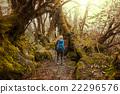 遠足 徒步旅行者 健行者 22296576