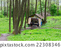 Holy spring in forest near village, Belarus 22308346