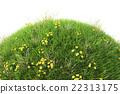 grass 22313175