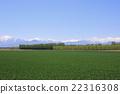 Hokkaido Tokachi snowy snowy mountains and vast fields 22316308