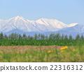 Hokkaido Tokachi snowfall Hidaka mountain range and vast fields and dandelion part 2 22316312