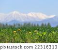 Hokkaido Tokachi snowy Hidaka mountain range and vast fields and dandelion part 3 22316313