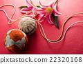 带刺的果子 日本传统手球 手球 22320168