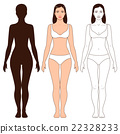 Woman Body Shape and Silhouette Template 22328233