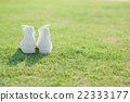 white sneakers on green grass 22333177