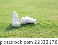 white sneakers on green grass 22333178